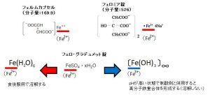 Fe2-Fe3-solution
