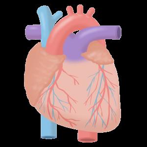 KREMEZIN-heart-failure