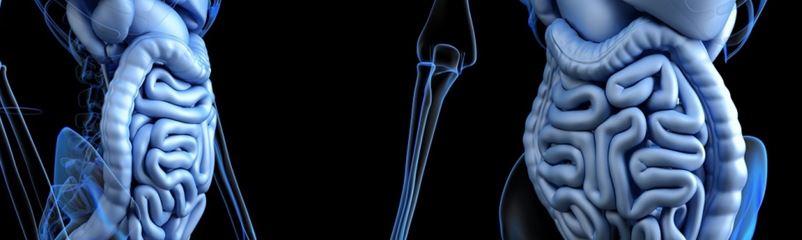"""抗生剤による腸内フローラ環境の変動を防ぐ活性炭吸着剤""""DAV132""""の臨床効果について"""