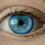 eybelis-glaucoma-comparison