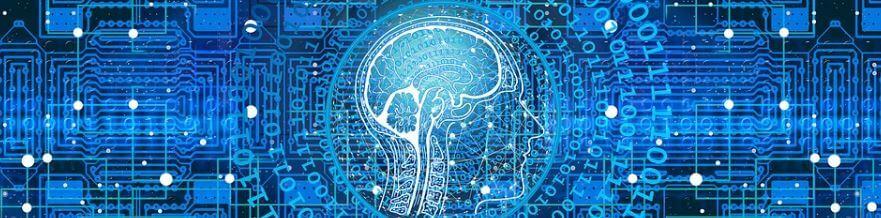 parkinson-brain